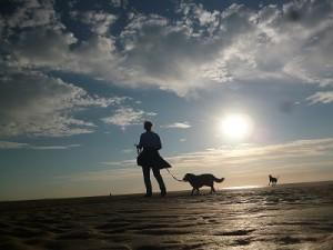 Strandspaziergänge mit Hund sind wunderschön