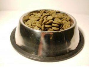 Trockenfutter extrudiert, kaltgepresst oder gebacken